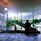 1994-lobby-window-restoration-4