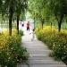 sanlihe-greenway