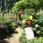 gabo fitzroy square garden (12)